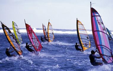 windsurf 001