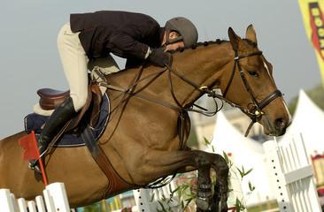 jumping chantilly 2005