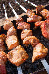 shish kebabs are fried on a mangal