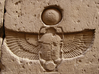 carved  scarab