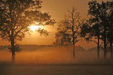 sunrise in hoogeloon