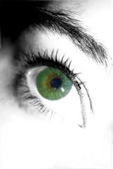 mon oeil en vert