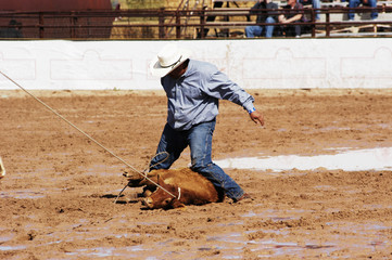 rodeo action