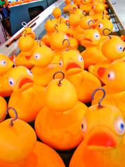 my little yellow ducky