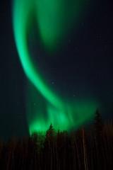 random aurora figure