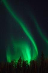 aurora swirl 3