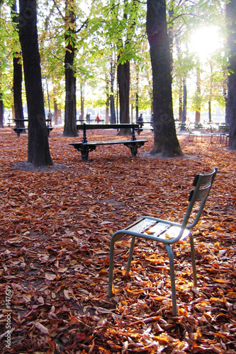 Chaise au jardins du luxembourg paris photo libre de for Chaise jardin du luxembourg