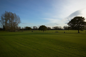 malahide castle green