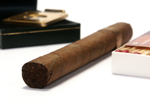 cigar on a white background
