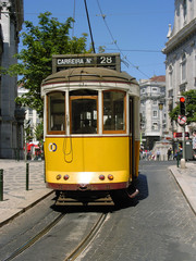 lisboa tram