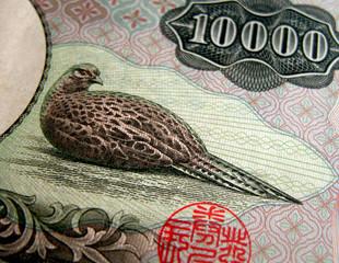10000 yen texture
