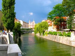 calm stream in slovenia