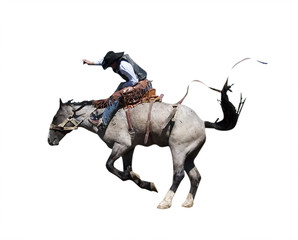 saddle bronc with clipping path