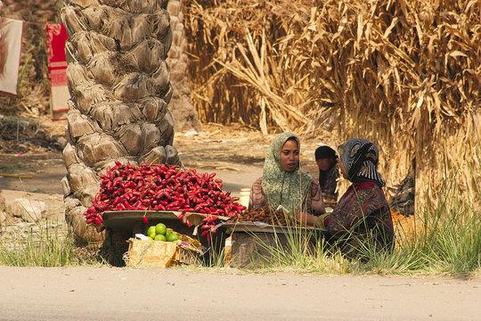 people of egypt - market