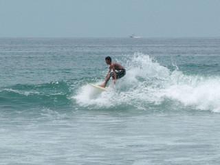 the surfeur