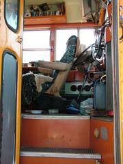 school bus arrange
