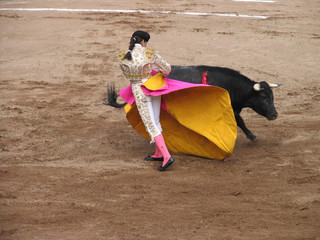Foto op Aluminium Stierenvechten woman fighting bull