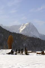 Wall Mural - die waxensteine mit herbstbaum im winter