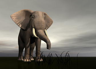 rendered elephant