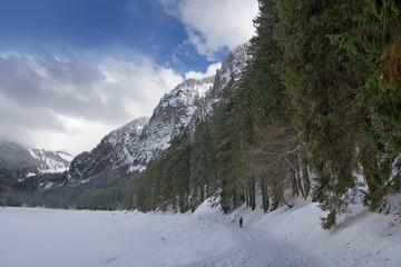 snowlake_1