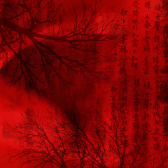 Wall Murals China chineese red background with signs