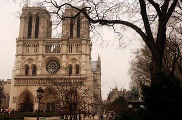 france, paris: notre dame