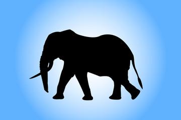 elephany silhouette