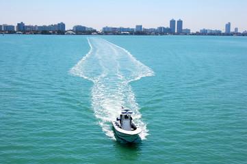 embarcación de recreación a motor