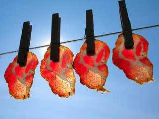 ham slices on line
