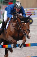 equestrian iv