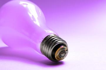 light bulb in purple