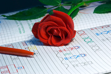 rose on the notebook