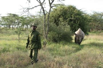 murani rhino noir et son rangers