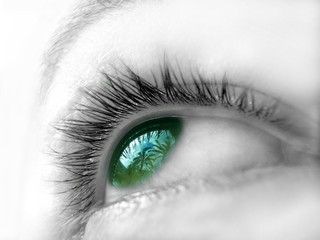 ojo verde iii