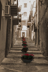 stairs and flowers in italian village street