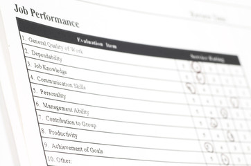 job performance form