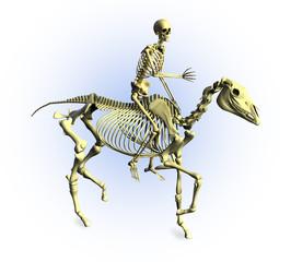 skeleton riders