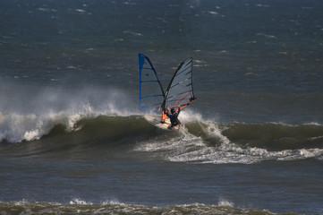 sailboarders ride  waves at punta san carlos