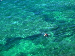 solo swimmer in sea off dubrovnik