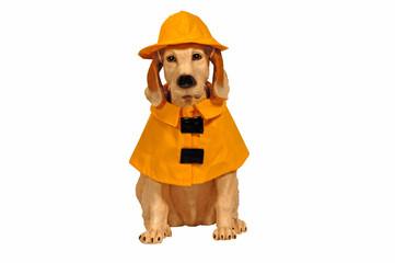 dog statue in raincoat