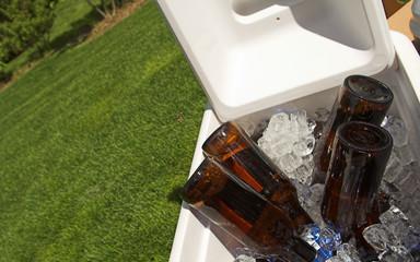 bottles in cooler