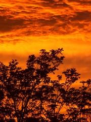 roter abendhimmel nach dem regen