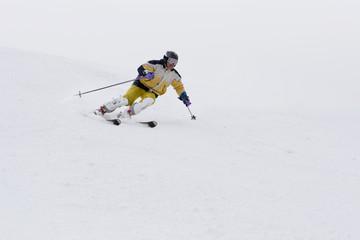 mountain-skier #1