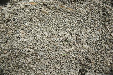 stein 5