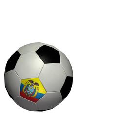 world cup soccer/football - ecuador