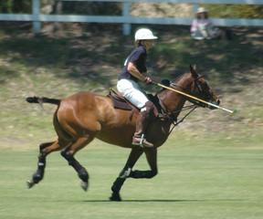 polo player