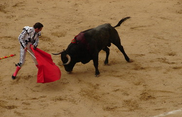 Photo sur Aluminium Corrida the art of fighting