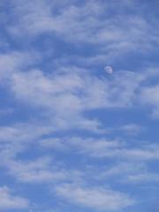 bleu, blanc, lune