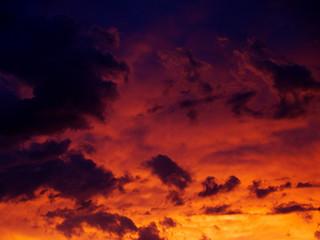Etiqueta Engomada - brilliant sunset (horizontal)