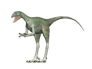 velociraptus the dinosaur